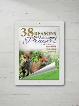 38 Reasons E-book